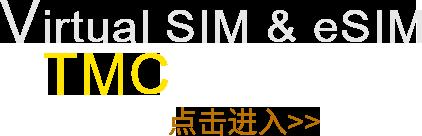 游伴伴APP车载版,车联网,eSIM,vSIM